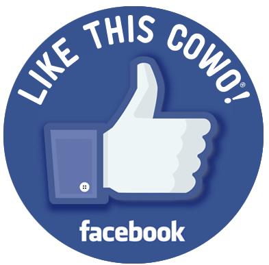 Facebook Coworking Como